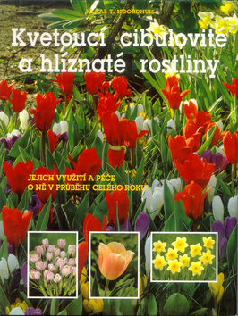 Kvetoucí cibulovité a hlíznaté rostliny