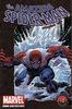 Amazing Spider-Man - John Romita; Stan Lee