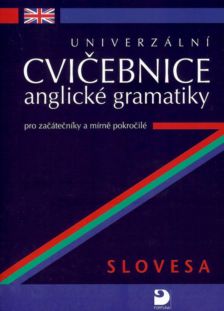 Univerzální cvičebnice anglické gramatiky - Petr Kácha
