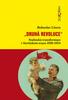 Druhá revoluce, Stalinská transformace v Sovětském svazu 1928-1934