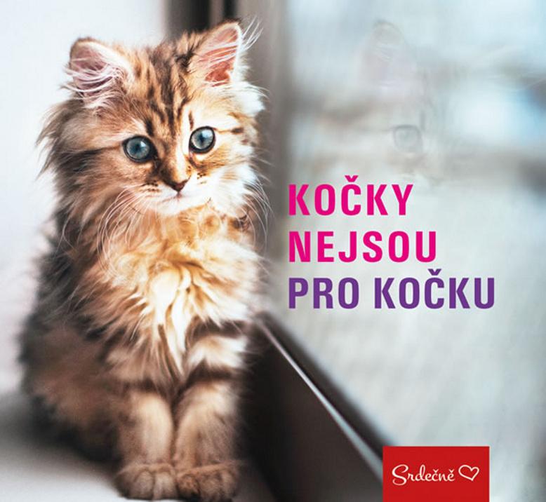Kočky nejsou pro kočku - Markéta Kliková