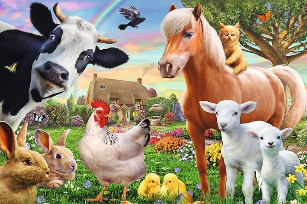 Puzzle Veselá farma